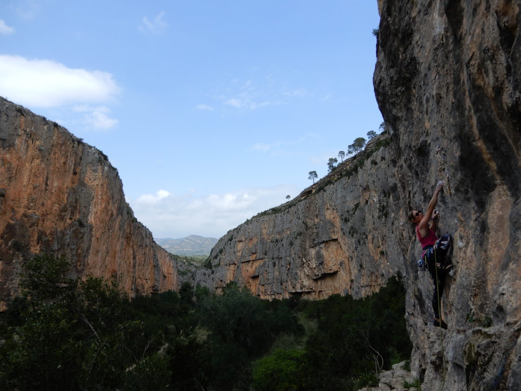 Periclónica (7a), sector Monte de Venus Chulilla